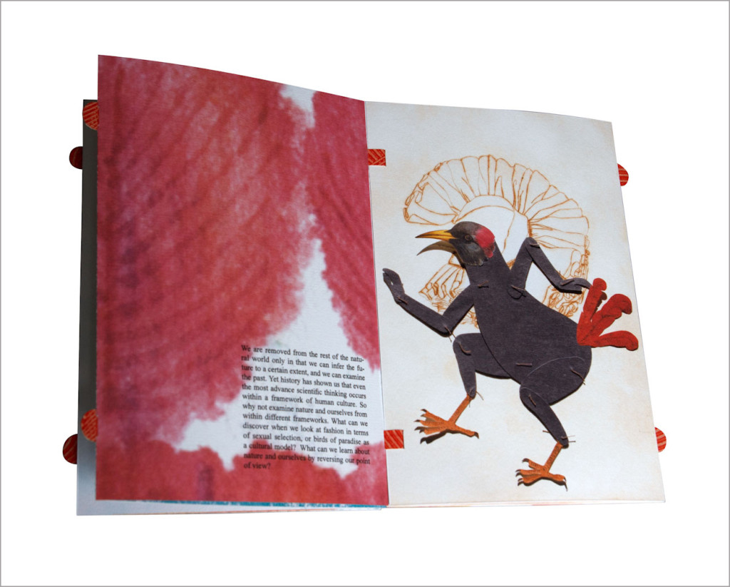 FEATHERS_PiaBOOKS-6