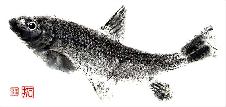 Gyotaku-ex