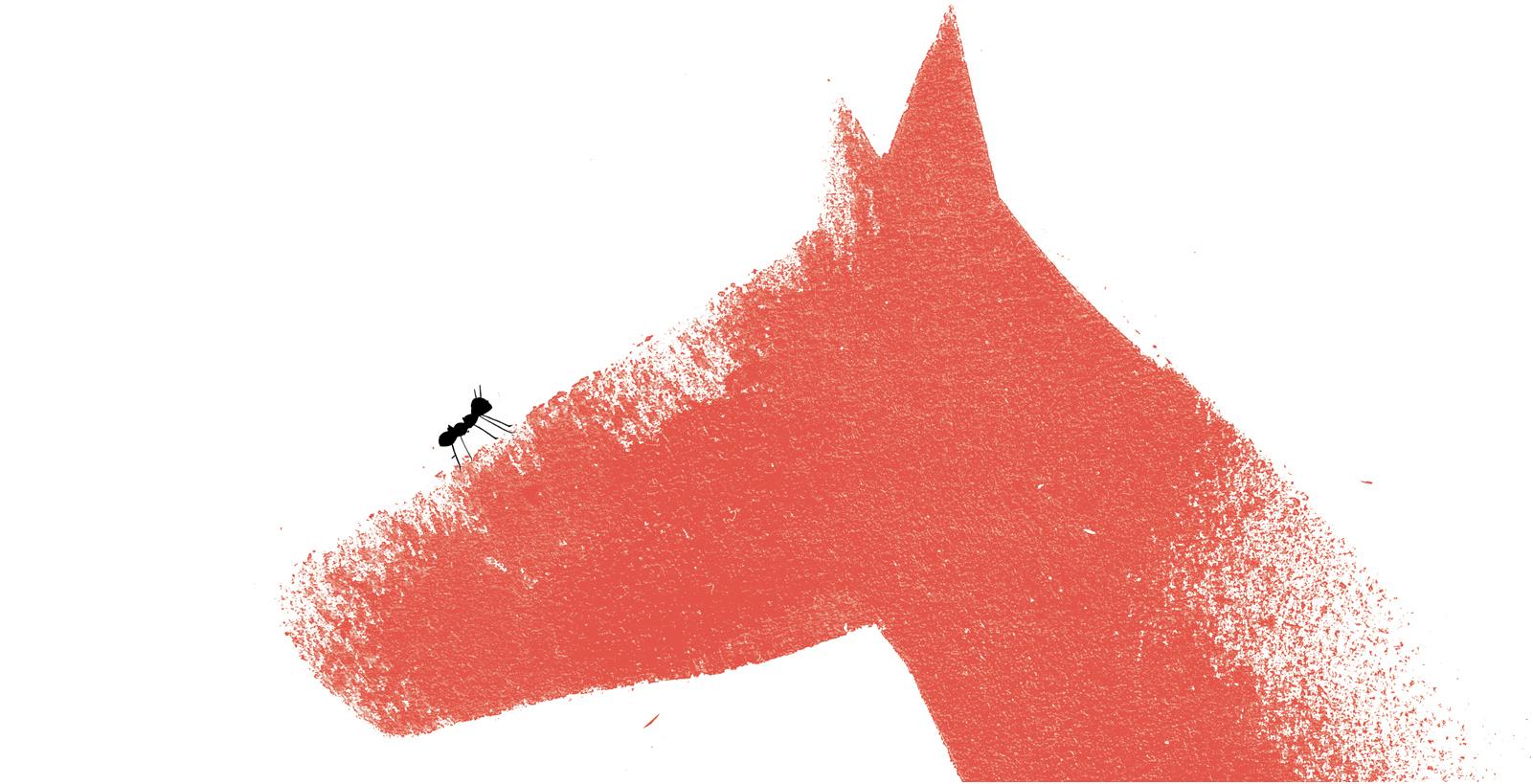 caballo-reel